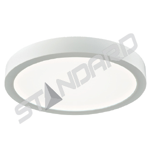 Flush mount LED Standard 65456