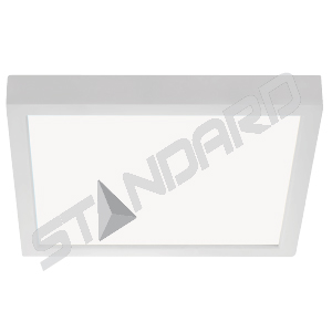 Flush mount LED Standard 65462